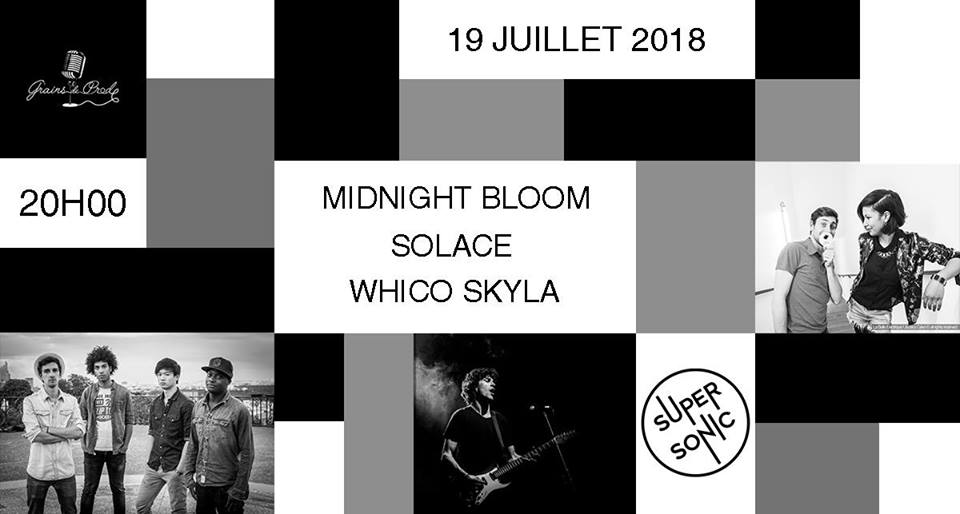 Midnight Bloom - Solace - Whico Skyla