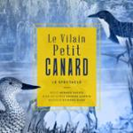 Le Vilain Petit Canard / D'après le conte de Hans Christian Andersen