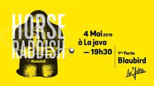 Horse Raddish release party concert #1 + BlauBird
