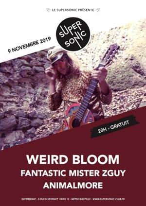 Weird Bloom • Animalmore / Supersonic (Free entry)