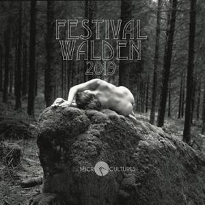 FESTIVAL WALDEN #3 : AUTOUR DE LUCIE + JEAN FELZINE + MATT LOW + NESLES...