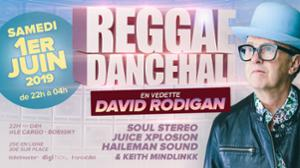 Reggae Dancehall (David Rodigan, Soul Stereo & more)