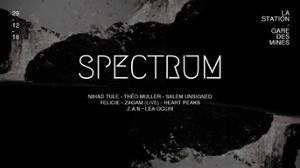 Spectrum MINUIT-MIDI