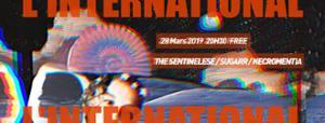 The Sentinelese • Sugarr • Alles Klar à l'International