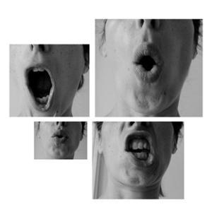 Vox, le mot sur le bout de la langue