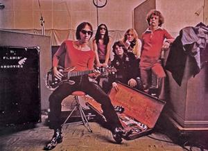 FLAMIN' GROOVIES + GUEST