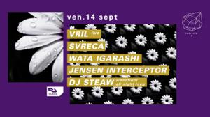 Concrete : Vril live, Svreca, Wata Igarashi, Jensen Interceptor