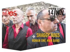 SHAGGY DOGS + RONAN ONE MAN BAND