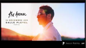 The Avener Tour - Salle Pleyel