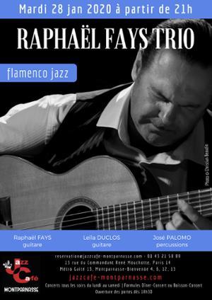 Raphaël Fays Trio au Jazz Café Montparnasse