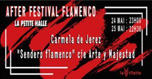 La Villette x La Petite Halle : After Festival Flamenco