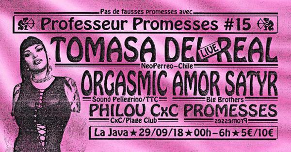 Professeur Promesses #15